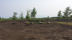 A distant shot of our completed council ring and firepit.