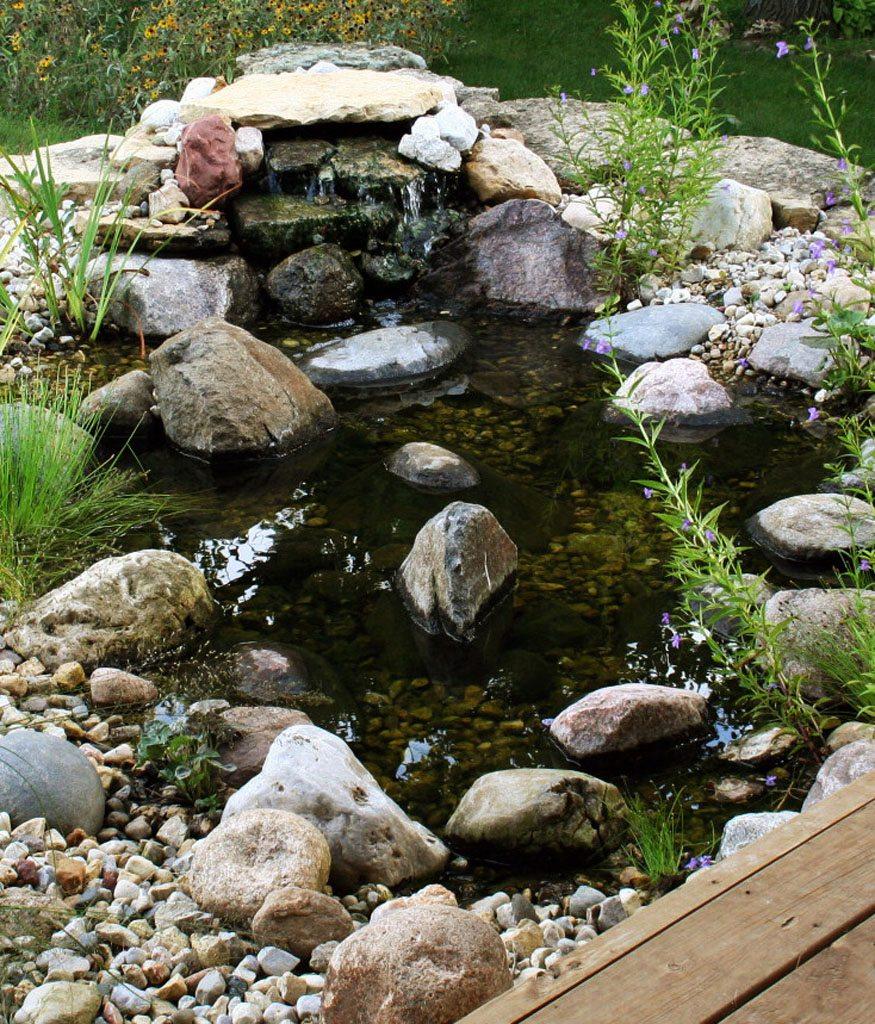Dickinson Residence Pond Formecology