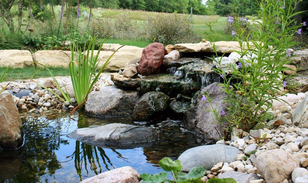 dickinson_residence_pond_albany_wi.jpg