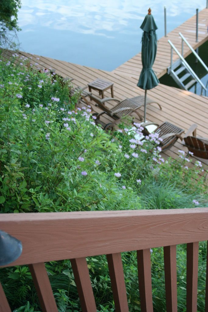 feldman_residence_slope_stabilization_native_plants_whitewater_wi_3