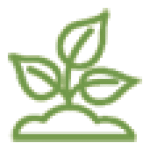 Formecology Icon - Plant