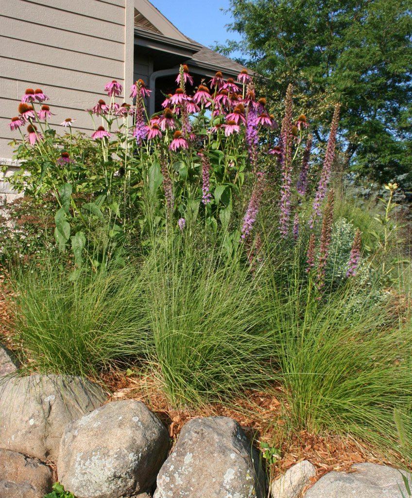 larson_residence_native_plants___boulders_verona_wi