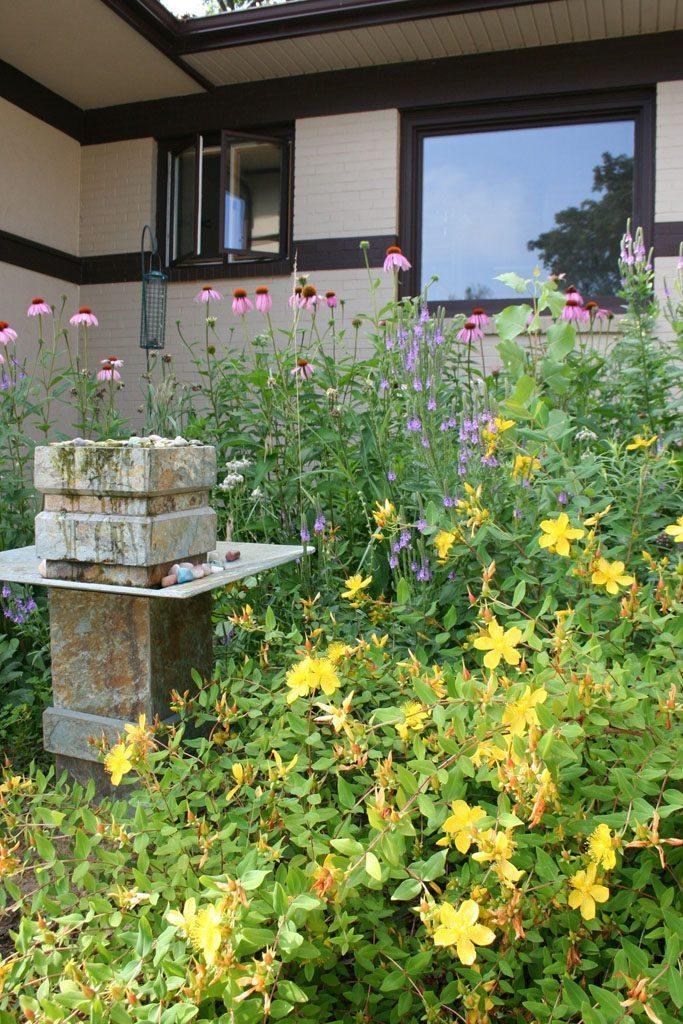 shreibman_residence_native_plants_garden_madison_wi