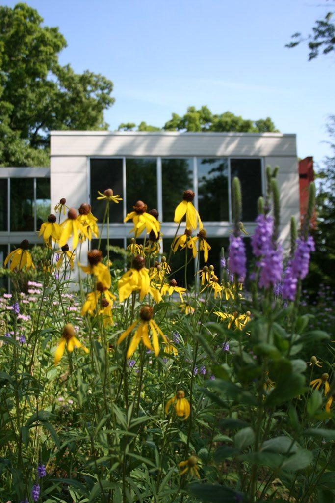 weinberg_newton_residence_native_plants_fontana_wi